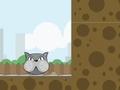 Game Crazy cats online - games online