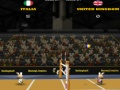 Game 2012 BunnyLimpics Volleyball online - games online