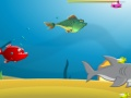 Game Fish Crunch online - games online
