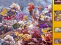 Game Hidden Spot Aquarium II online - games online
