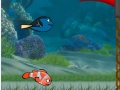 Game Fish race  online - games online