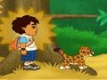 Game Diego and Jaguar  online - games online