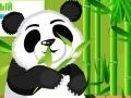 Game Panda Care  online - games online
