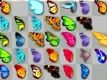 Game Butterfly's couple wings online - games online