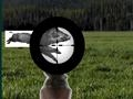 Game Sport Shooting online - games online